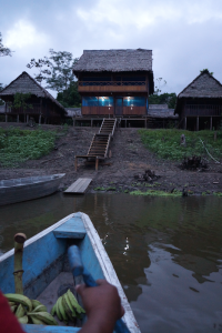 Trip to Amazon - AquAmazon Lodge